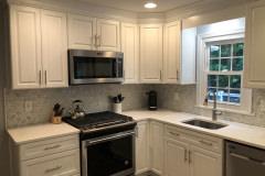Garnet Valley Home Remodel 1